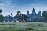 Temple Complex of Angkor Wat  Angkor  UNESCO World Heritage Site  Siem Reap  Cambodia  Indochina