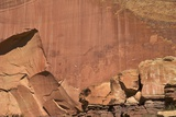 Fremont Indian Petroglyphs in Capitol Reef National Park  Utah  United States of America