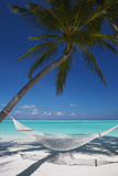 Hammock on Tropical Beach  Maldives  Indian Ocean  Asia
