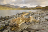 Cullin Mountains from Loch Slapin  Isle of Skye  Inner Hebrides  Scotland  United Kingdom  Europe
