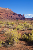 Fisher Towers and Sagebrush Foreground  Near Moab  Utah  United States of America  North America