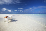 Deck Chairs on Tropical Beach  Maldives  Indian Ocean  Asia