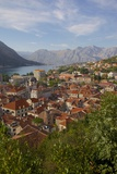 View over Old Town  Kotor  UNESCO World Heritage Site  Montenegro  Europe