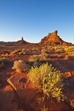 Sitting Hen Butte and Rooster Butte at Sunset  Valley of the Gods  Utah  United States of America