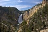 Lower Falls from Red Rock Point  Yellowstone Nat'l Pk  UNESCO Site  Wyoming  USA