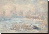 Le Givre  1880