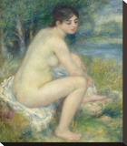 Nude in a Landscape  1883