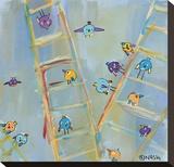 Climb or Fly