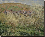 Plum Trees in Blossom  1879