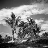 Santa Maria Beach  Havana  Cuba