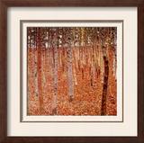 Beechwood Forest  1903