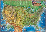 Children's Map of the USA  Laminated Educational Poster