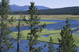 Distant Hills and Pine Forests and the Gentle Bend of the Yellowstone River