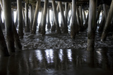 Shady Patterns of Pilings and the Sea under the Boardwalk of the Pier