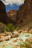 Hiker Walking in the Turquoise Waters of Havasu Canyon