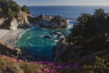 Mcway Waterfall and Pink Flowers Overlook a Cove Near Big Sur