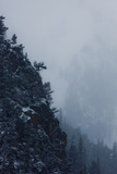 New Snow and Fog on Canyon Walls
