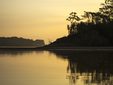 Silhouetted Forest Along the Madre De Dios River at Sunset