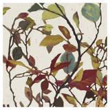 Bordeaux Leaves II - Mini