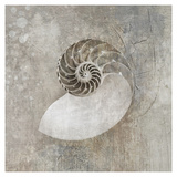 Le Nautilus I Reproduction d'art par Elena Ray