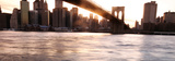 Manhattan and the Brooklyn Bri