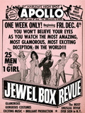 Apollo Theatre Jewel Box Revue: Gorgeous and Glamorous  25 Men and 1 Girl