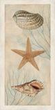 Ocean Companions I Reproduction d'art par Deborah Devellier