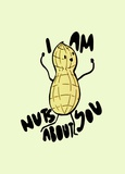 I Am Nuts About You