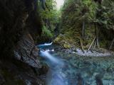 Mount Baker-Snoqualmie National Forest  Washington