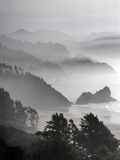 A Foggy Day on the Oregon Coast Just South of Cannon Beach