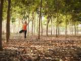 Lisa Eaton Practices Tree Pose in a Rubber Tree Plantation -Chiang Dao  Thaialand