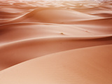 Sand Dune Ridges  Morocco