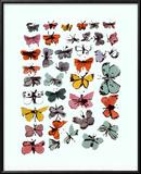 Butterflies  1955
