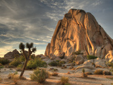 Sunset at Joshua Tree National Park in Southern California
