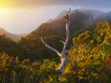 Na'Pali Coast  Hawaii