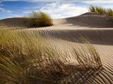 Guadalupe-Nipomo Dunes National Wildlife Refuge  Guadalupe  California:
