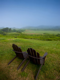 Adirondack Chairs on Lawn at Martha's Vineyard with Fog over Trees in the Distant View