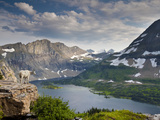 Mountain View and Hidden Lake Along Hidden Lake Trail  Glacier National Park  Montana