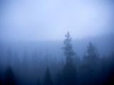Morning Fog over Upper Green River Valley  Wind River Range  Wyoming