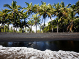 Punalu'U  Hawaii: the Punalu'U Black Sand Beach