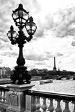 Detail of the Pont  Alexander III bridge - with the Eiffel Tower in the background - Seine River -