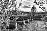 Pont des Arts - Institut de France - Paris - France