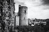 Castle - Clisson - Loire-Atlantique - Pays de la Loire - France
