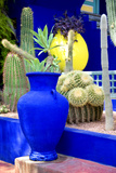Jardin Majorelle - Marrakech - Morocco - North Africa - Africa