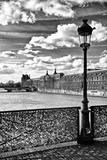 Pont des Arts View - Paris
