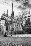 A nun - Notre Dame Cathedral - Paris - France