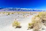 Panoramic Landscape - Death Valley National Park - California - USA - North America