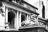 New York Public Library - Manhattan - United States