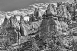 Bryce Amphitheater - Utah - Bryce Canyon National Park - United States