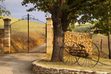 Dawn at Gated Entrance to Farm Near Greoux-Les-Bains  Provence  France